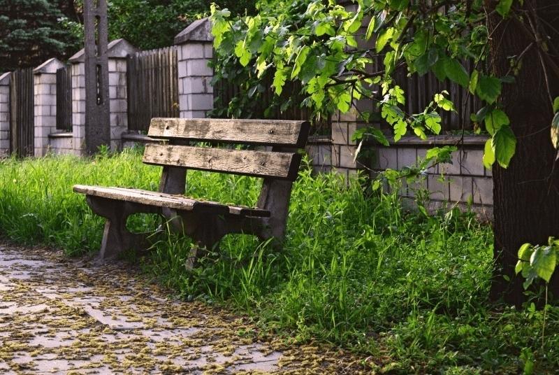 abandon meditation